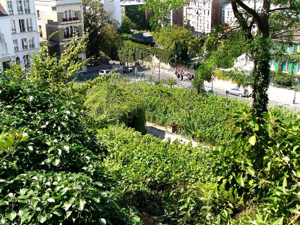 Sur le béton parisien, des vignes