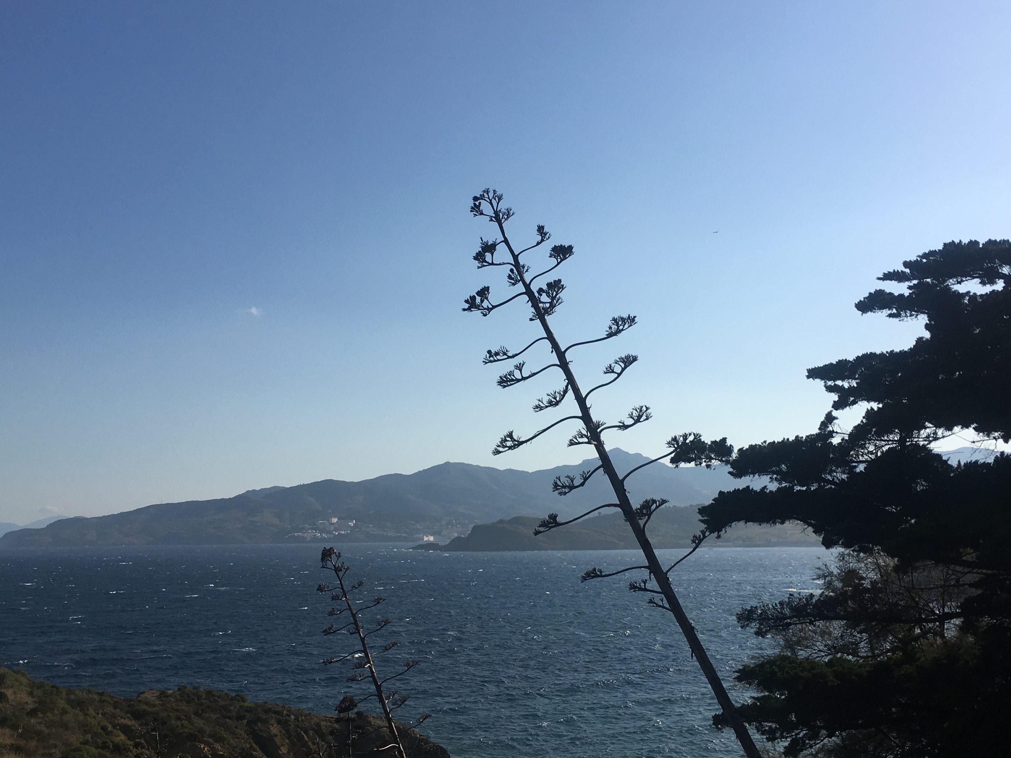 ©ADT sentier du littoral