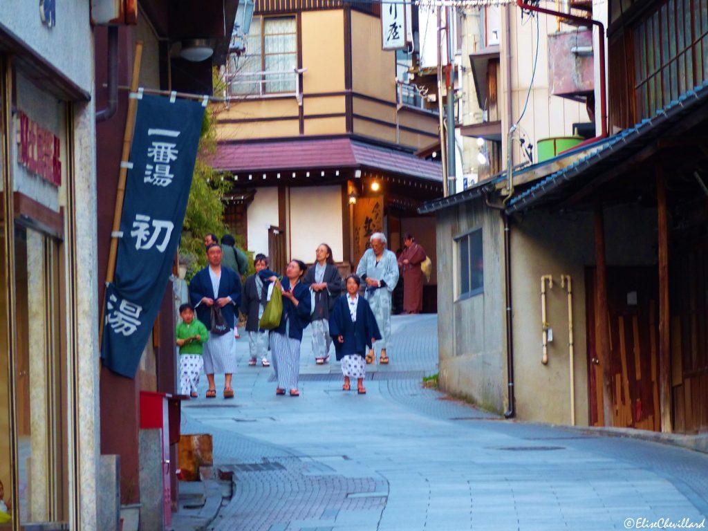 Province de Nagano, Village de Yudanaka