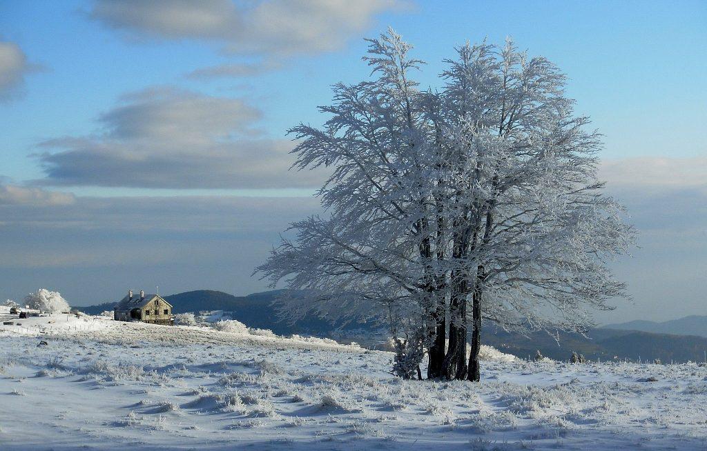 Vosges : Un hiver dans la Bresse